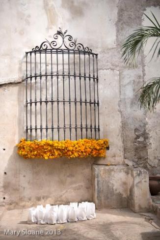 Marigold Cage